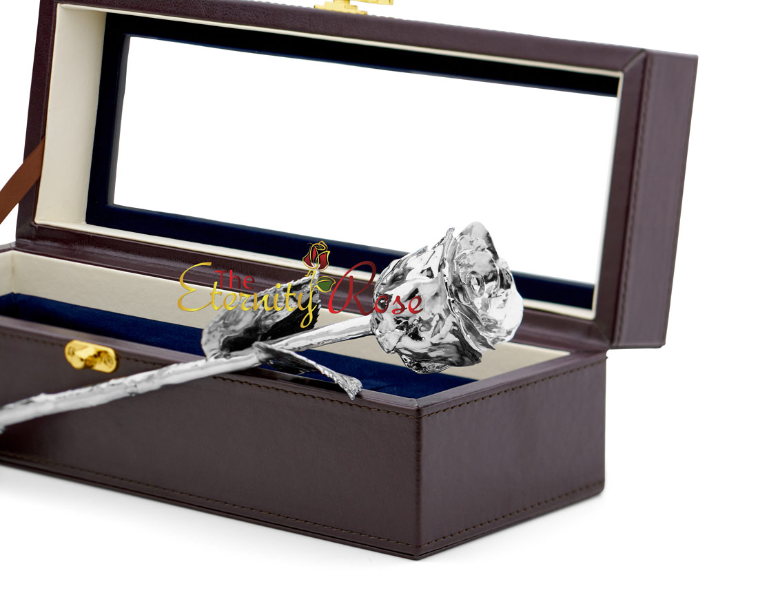 Platinum-Dipped Natural Rose. Leather Window Box
